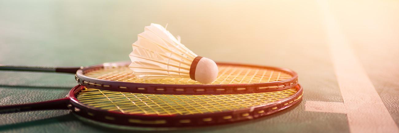 BSV-Sportbereich-Badminton